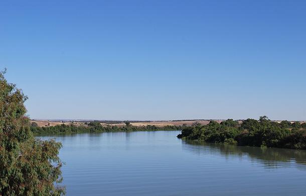 แม่น้ำที่ยาวที่สุดในโลก, แม่น้ำเมอร์เรย์เป็นแม่น้ำที่ยาวที่สุดของออสเตรเลีย มีความยาวประมาณ 2,375 กิโลเมตร (1,476 ไมล์) มีต้นกำเนิดจากเทือกเขาออสเตรเลียนแอลป์ ไหลคดเคี้ยวผ่านที่ราบภายในประเทศออสเตรเลีย ก่อนจะไหลลงสู่ทะเลสาบอเล็กซานเดรียน่า
