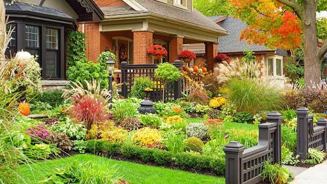 Fresh Fall Gardening Ideas 2020