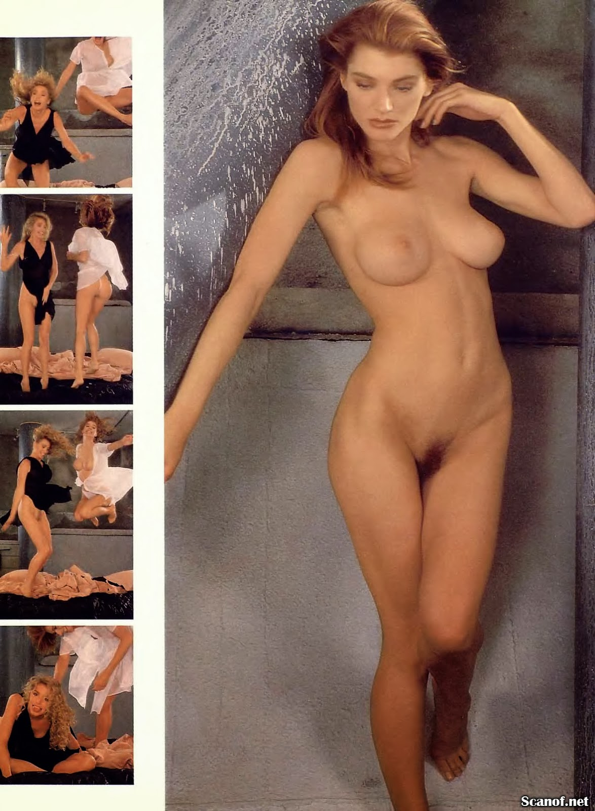 Shannon Tweed Nude Fakes Videos Nude And Porn Pictures -9563