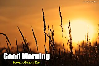 Sunrise Good Morning Beautiful Wishes