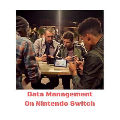 Nintendo Switch Save Data Transfer