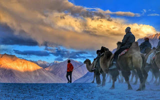 Places to visit in Jammu and kashmir (Nubra valley)