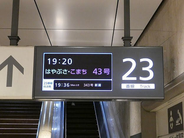 秋田新幹線 こまち43号 田沢湖行き E6系(斉内川橋りょう架け替え工事に伴う運行)
