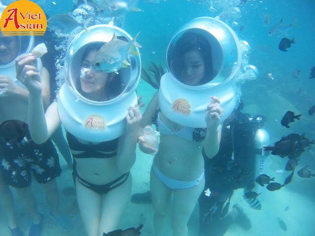 Tour Đi Bộ Dưới Biển kết hợp tour 4 đảo 2