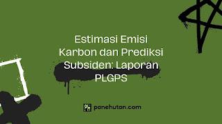 Estimasi Emisi Karbon dan Prediksi Subsiden: Laporan PLGPS