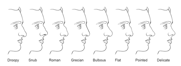 Jeff Searle: Drawing the nose