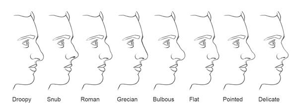 nose chart - Morenimpulsar
