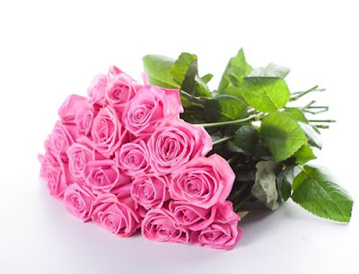 Bunga Mawar Warna Pink