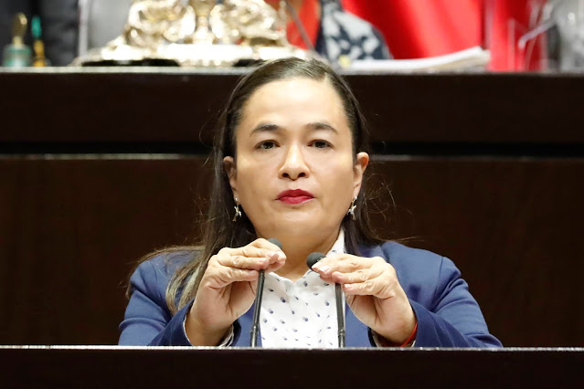 Verónica Juárez exhorta a Gobernación a designar a titular de Secretaría Ejecutiva del Sipinna