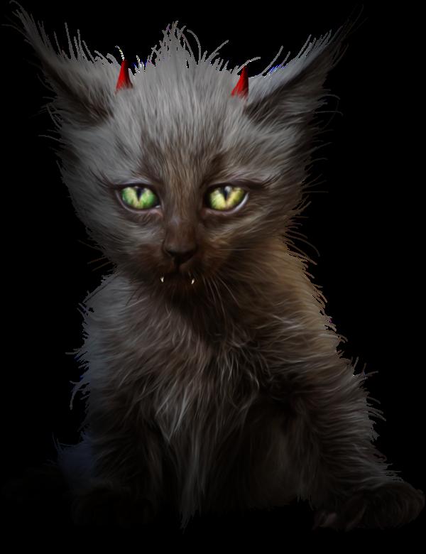 Gatos negro con cuernos de diablo, Tubes halloween de animales
