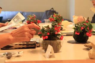 Cafeでのワークショップで出来上がった大実ゴールテリアの苔玉を見ながら育て方を聞いている写真