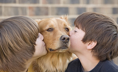 Adoptando un perro