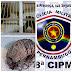 Crime contra a Fauna brasileira, aconteceu em Pesqueira