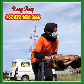 Kambing Guling Serang Banten, kambing guling serang, kambing guling, guling kambing serang, kambing guling banten,