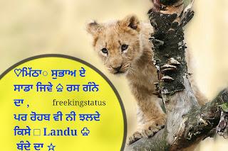 badmashi status in panjabi,badmashi status punjabi