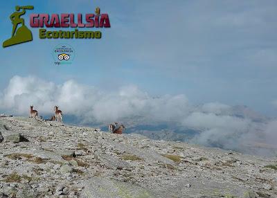 Trekking Sierra de Gredos