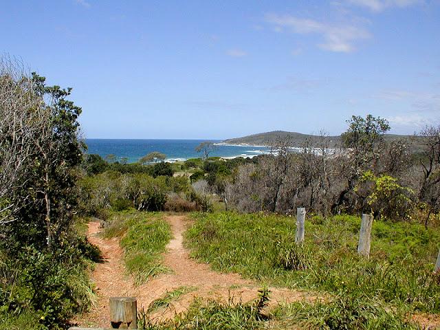 Coastal access near Yamba, New South Wales, Australia. Photo by Loire Valley Time Travel.