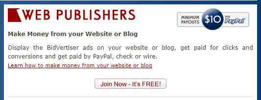 Blog/website me Bidvertiser ke Ads lagakar Paisa kaise kamaye