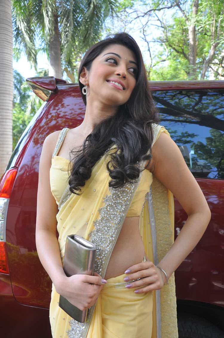Pranitha in Saree Cute Pictures   ~Picx~