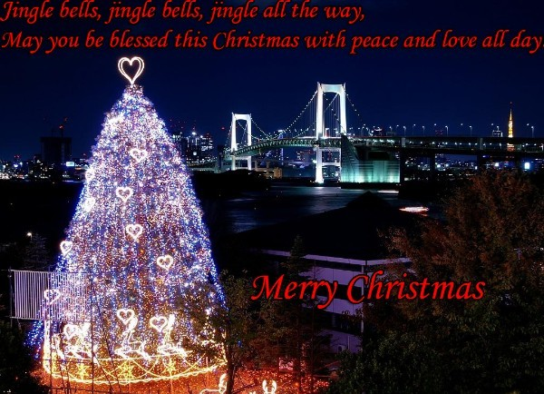 Merry Christmas  wishes for lovers