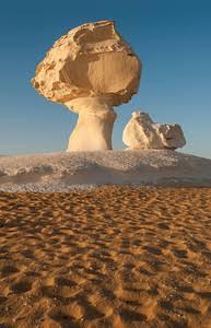 White desert safari