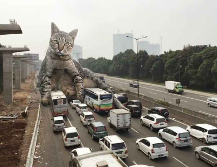 This Guy Photoshops Cats Into Giants And The Result Is Meow-nificent