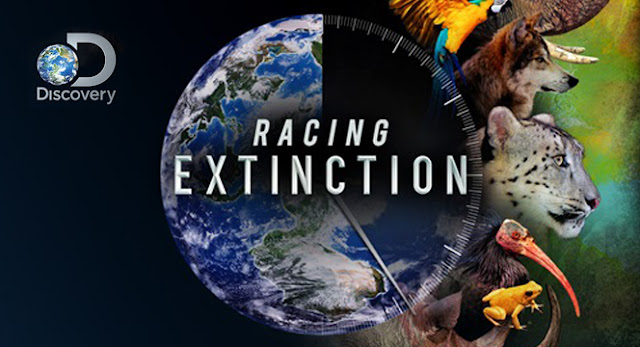 Racing extinction opinion personal