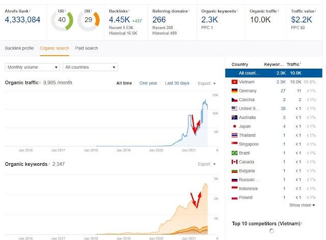 6 bước Audit Website dễ đến mức Newbie cũng làm được