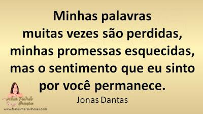 Minhas palavras  muitas vezes são perdidas,  minhas promessas esquecidas,  mas o sentimento que eu sinto  por você permanece. Jonas Dantas