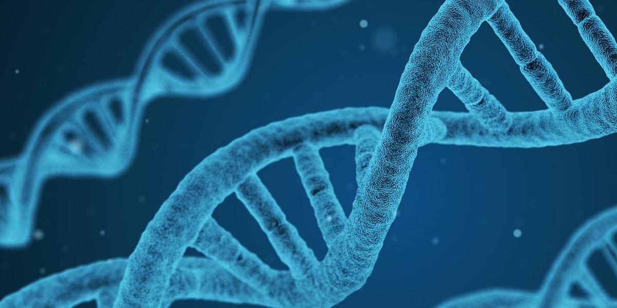 Gen responsable de una nueva enfermedad