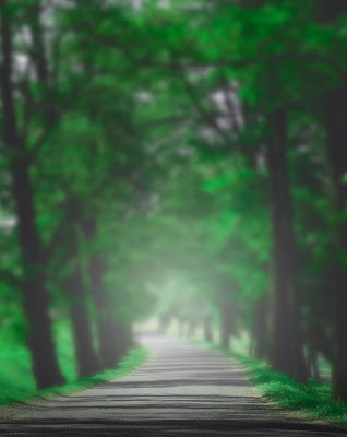 Fully Green With White Light Road Background Free Stock