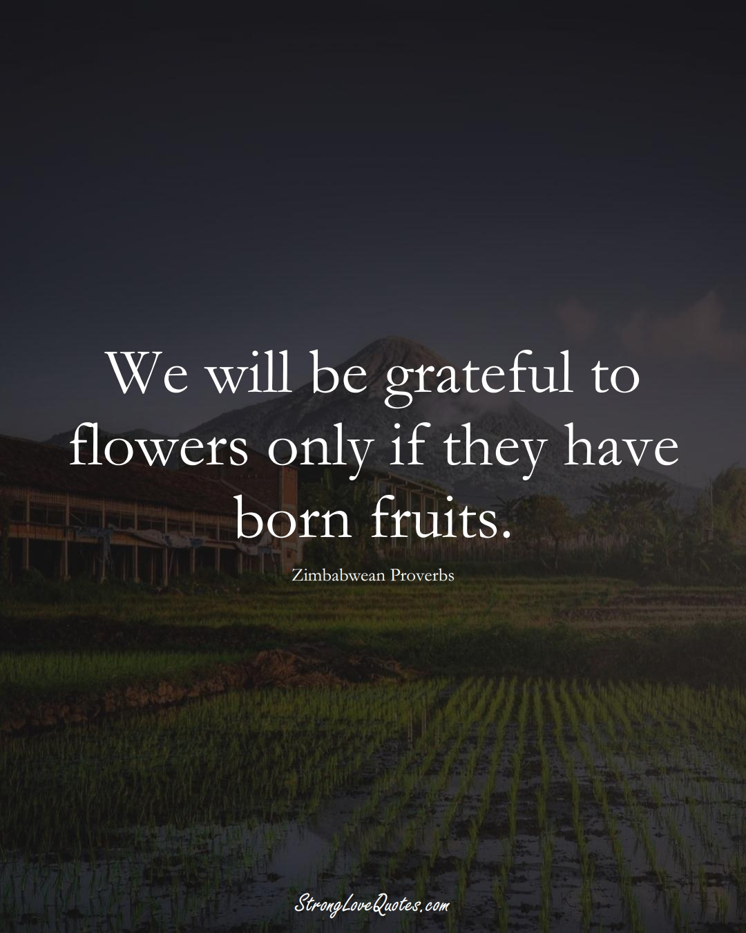 We will be grateful to flowers only if they have born fruits. (Zimbabwean Sayings);  #AfricanSayings