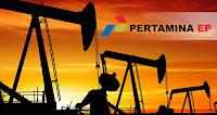 PT Pertamina EP - Recruitment For Junior Analyst, Analyst, Engineer, Senior Engineer Pertamina Group August 2017