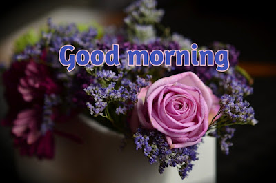 Good Morning Pics download