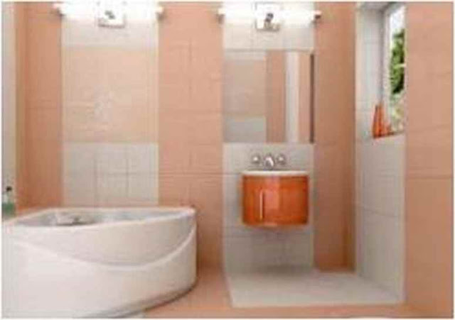 Small Bathroom Ceiling Color SBC PX10