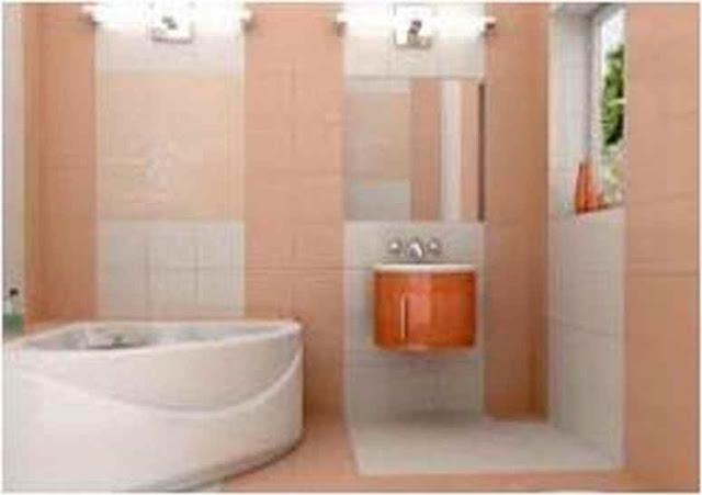 Small Bathroom Ceiling Color SBC PX10