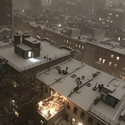"This ""aerial"" image was taken from the vantage point of a high rise building in close proximity to me.  It features rooftops of buildings covered in snow and my garden during a snowstorm that occurred on 12-16-2020.  The picture was taken from far away so other than the string lights which hang above my place, details of my garden are not recognizable.  For your info, my garden is the setting for my three volume book series, ""Words In Our Beak."" You can read about these books in another blog post @ https://www.thelastleafgardener.com/2018/10/one-sheet-book-series-info.html"