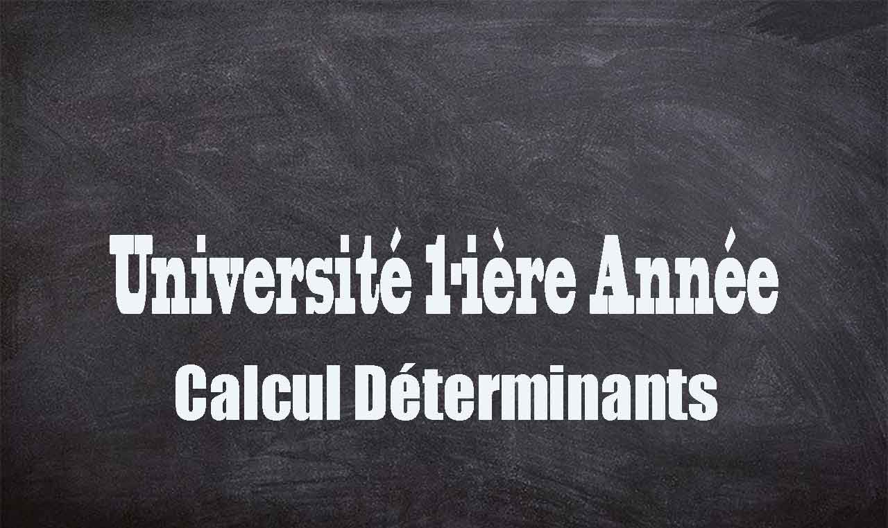 exercices-determinants-univ1
