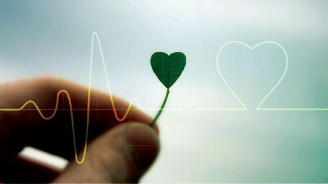 Arti Cita Dan Cinta Bagi Kehidupan