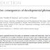 Consequências reprodutivas da exposição ao fitoestrógeno no desenvolvimento