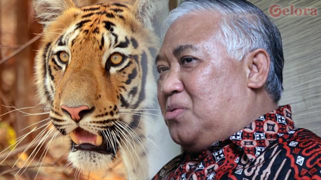 Din Syamsuddin: RUU HIP Bangunkan Macan Tidur