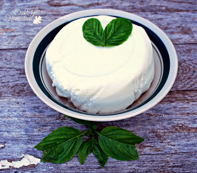 How to make delicious homemade ricotta cheese at home.