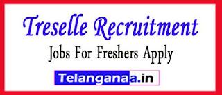 Treselle Recruitment 2017 Jobs For Freshers Apply