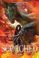 Save the Dragon. Destroy the World. Trinity Foxx is used to her grandfather's crazy stories, so she doesn't believe the latest treasure he brought home to their failing West Texas museum is a real dragon's egg. Not until Connor Jacks, a dragon hunter from the future, tells Trinity that the world is about to be wiped out by a fiery dragon war—unless they find a way to stop it. Save the Dragon. Save the World But Connor's not the only one after the egg. His twin brother Caleb believes dragons have the power to save mankind and must be protected. Caleb has seen too many dragons destroyed in the war-scorched future—he'll do whatever it takes to save this one. With a host of enemies hot on her heels, Trinity must decide who to believe. Connor the brave solider? Caleb the cocky rebel? Or the baby dragon that's starting to whisper to her...saying they are destined? The fate of the world may depend on her choice.