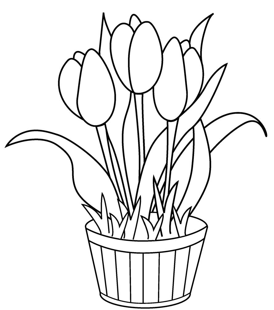 The Best Mewarnai Gambar Bunga Anggrek