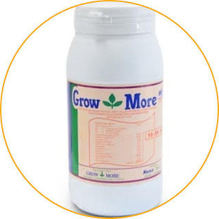 Grow More NPK 10-55-10 High in phosphate, flowers grow healthy and fast. This fertilizer is intended for plants that need high amounts of phosphate for their flowers to grow. As the name implies, the content of three ingredients is sodium 10, phosphate 55. and potassium 10. It can be seen that the phosphate substance is high enough so that it is effective in supporting faster and healthier flower growth. This product itself is in the form of blue crystals which are very soluble in water. Apply it by spraying it on the leaves or pouring it into the soil. For those of you who want plants to have better flower growth, this product can be an option.