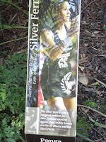 Silver Tree Fern is an emblem for New Zealand athletes - Christchurch Botanic Garden
