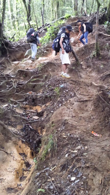 Jalur Pendakian Gunung Cikuray