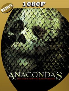 Anaconda 2: En Busca De La Orquidea Sangrienta (2004) Latino BDREMUX [Google Drive] Onix
