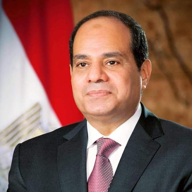 السيسى: ثورة يونيو كانت أرقى صيحات التعبير عن أقوى الثوابت المصرية